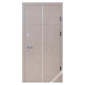 Дверь Страж Терра