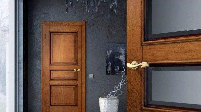 фото двери из натурального дерева